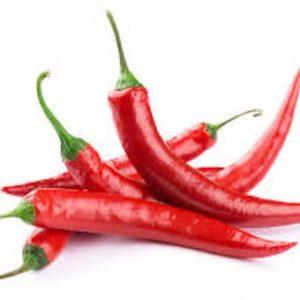 organic chillies